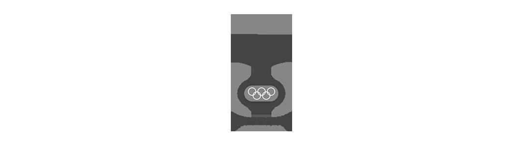 Olympisch_stadion_logo_ZW2