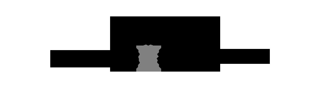 topsport_amsterdam_logo_ZW2